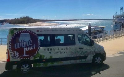 Whales and Wine – Two Great Reasons to visit the Shoalhaven